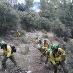 Extinguido el incendio forestal de Marbella tras afectar a 6 hectáreas
