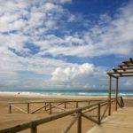 La provincia de Cádiz alcanzó una ocupación del 64,86% en la primera quincena de agosto
