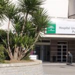 Muere una mujer de 87 años por el virus de la fiebre del Nilo, el primer caso en Cádiz