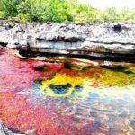 Caño Cristales, el río más hermoso del mundo está en Colombia