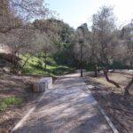 Málaga capital se acerca a los diez metros cuadrados de zona verde por habitante