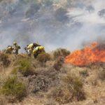 El Infoca da por controlado el incendio forestal en Güéjar Sierra