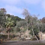 Málaga renueva el Parque Real con nuevos senderos y zona infantil