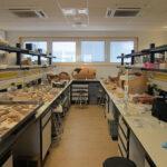 Logran en Jaén un sistema que cataloga al instante cerámica de yacimientos