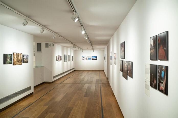 Estreno mundial en Sevilla de la exposición World Press Photo 2021
