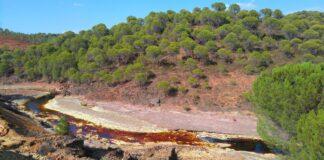 Rutas circulares para practicar senderismo en Huelva