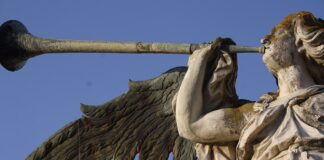 La Universidad de Sevilla se sitúa en el primer puesto nacional de seis disciplinas