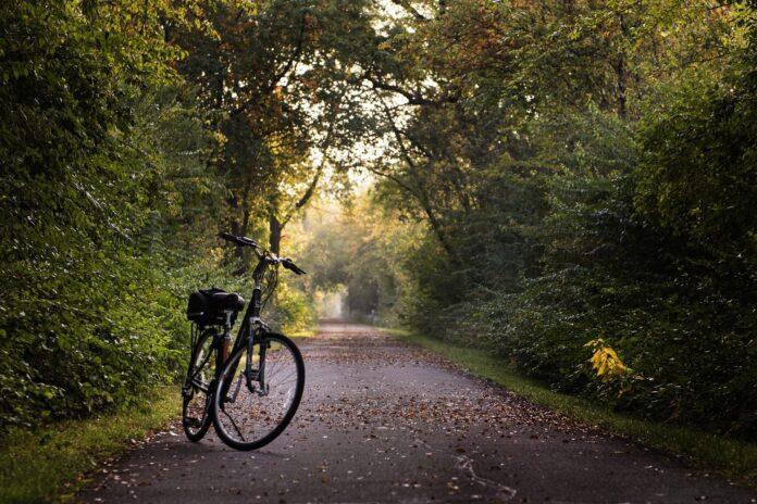 Día Mundial de la Bicicleta: Rutas en bicicleta más bonitas por Andalucía