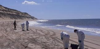 Identifican el buque causante del vertido de hidrocarburo en Huelva
