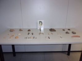 Hallan en Almería una cueva con restos prehistóricos