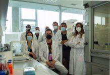 Diseñan nanocápsulas de aceite de oliva eficaces frente a células cancerígenas