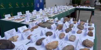 Investigan a una persona que poseía restos prehistóricos de todo el mundo