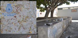14 jóvenes detenidos por una macropelea durante un botellón en Almería