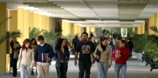 Estas son las carreras universitarias con mayor tasa de inserción laboral