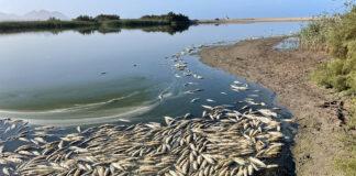 El proyecto de agrupación de vertidos El Toyo mejorará la depuración en Cabo de Gata