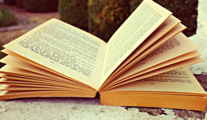 Convocan los premios Málaga de Novela y Ensayo dotados con 18.000 y 6.000 euros