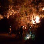 Más de 250 efectivos trabajan en el control del incendio de Sierra Bermeja