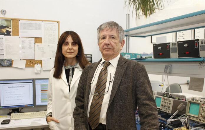 Un modelo de ratón permitirá averiguar por qué pacientes NDAN no desarrollan Alzhéimer